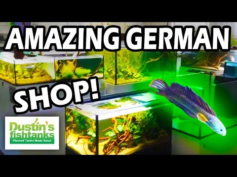 Amazing Aquarium Shop in Germany! Come take a tour
