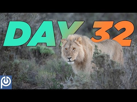 90 Days To Freedom From Porn Addiction: Day 64 from YouTube · Duration:  1 minutes 45 seconds