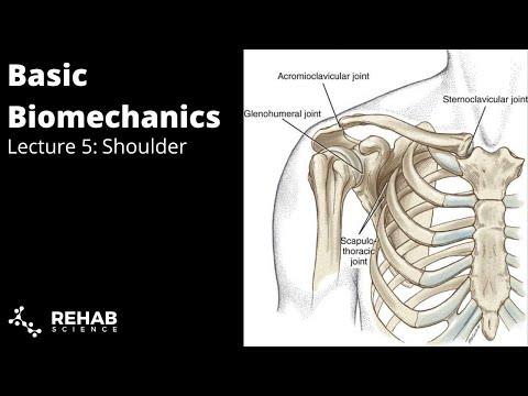 Biomechanics Lecture 5: