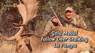 Argentina Big Hunting gold medal fallow deer stalking.wmv