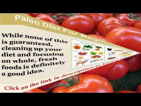 See now paleo diet blog