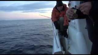 Рыбалка в Норвегии ночью (Night fishing in Norway)(Выезд на ночную рыбалку в Норвегии (Баренцево море Night fishing in Norway). Днем Женя зацепил гигантского палтуса..., 2013-05-20T21:02:28.000Z)