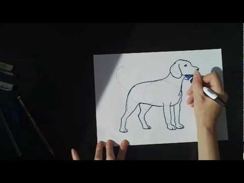Как нарисовать кролика / How to draw rabbit