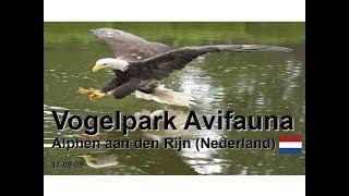 Vogelpark Avifauna - Alphen aan den Rijn (Nederland) - 17-09-09