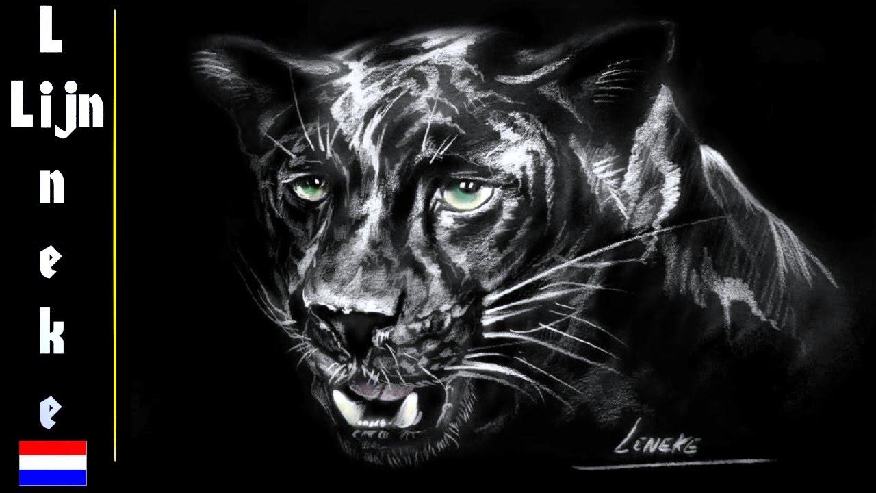 f01f6618322 ZWARTE PANTER tekenen op zwart papier - dieren tekening - YouTube