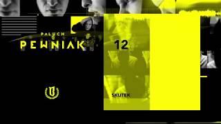"Paluch - ""Skutek"" (OFFICIAL AUDIO 2009)"