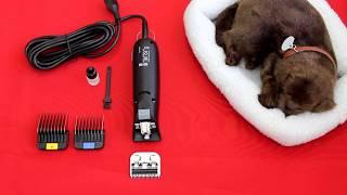 Как помочь покупателю выбрать машинку для стрижки животных Moser