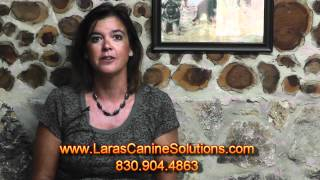 San Antonio Dog Training & Behaviorist - Lara's Canine Solutions