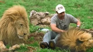 5 Tình bạn khó tin giữa loài động vật nguy hiểm và con người