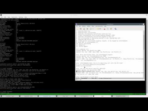 Generating SSL certificate chain in Linux