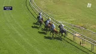 Vidéo de la course PMU PRIX DE TOURGEVILLE