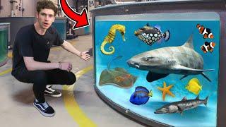 LARGEST AQUARIUM FISH & RARE EXOTIC ANIMAL TOUR!! (800+ Creatures)