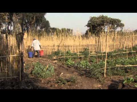 GPTV: Film Trijntje Beimers in Tanzania