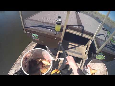 Washington Bowfishing April 2015 Spawn Daytime