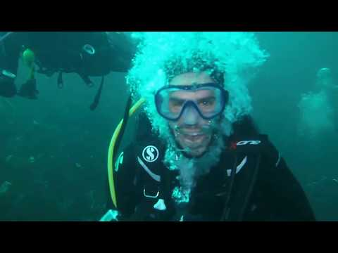 Our Scuba Trips | Finnis Reef