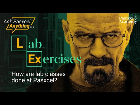 How Are Lab Classes Done At Pasxcel?
