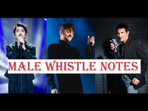 male-singers---whistle-notes-register