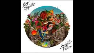 Big Gigantic - No Apologies (Ft. Natalie Cressman)