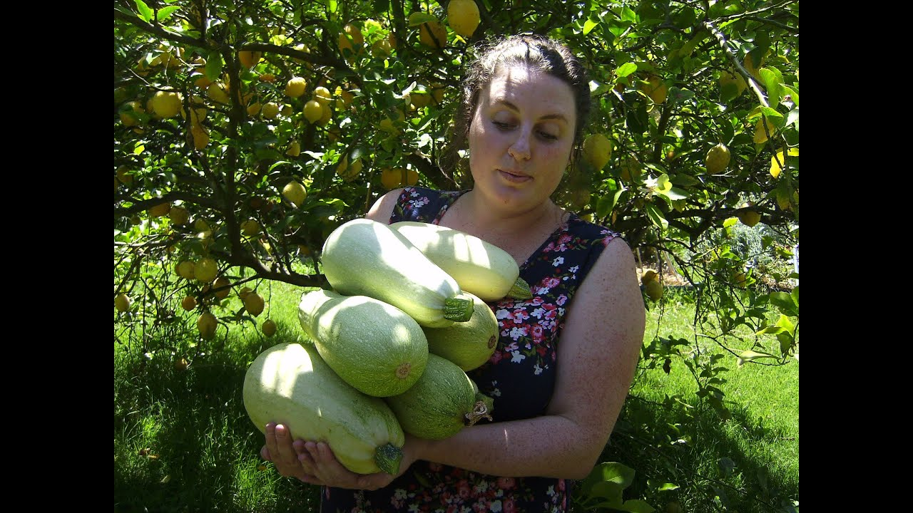 Image Result For Add Compost To Vegetable Garden