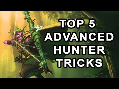 Top 5 Advanced Hunter Tips & Tricks In Classic WoW