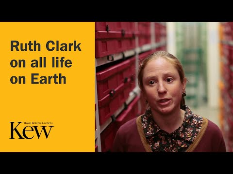 The Plant Family Tree - Ruth Clark on all life on Earth