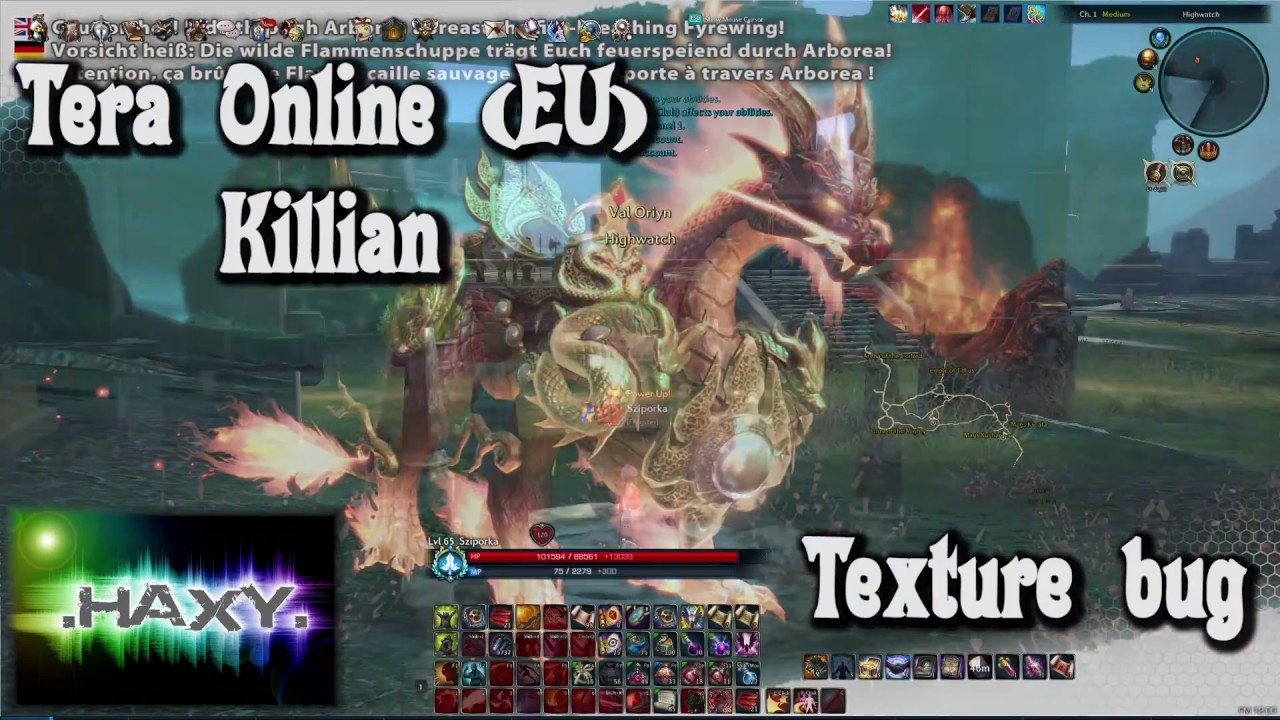 TERA Online - Texture bug [UNSOLVED]