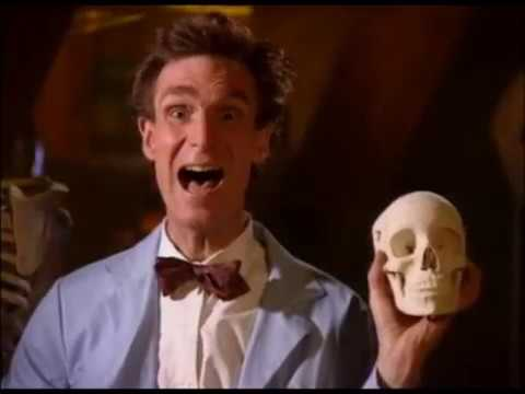 Download Bill Nye the Science Guy - S02E08 Bones and Muscles