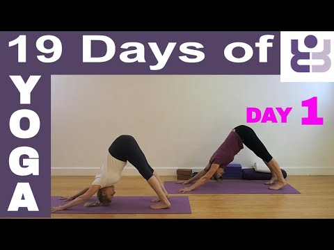 19 Days of Yoga - Day 1. Iyengar Yoga Sequence