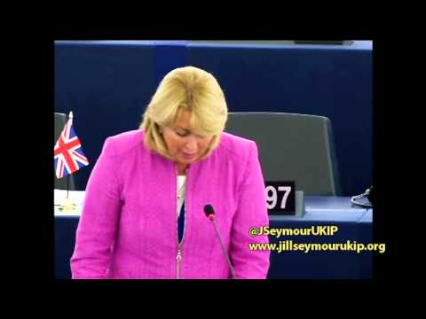 EU road charging scheme an affront to the sovereignty of Member States - Jill Seymour MEP