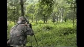 Rifle Hunting Big 31 inch Waterbuck