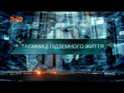 Таємниці підземного життя – Загублений світ. 4 сезон 15 випуск