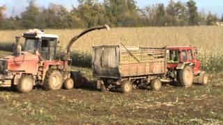 Уборка кукурузы 2013