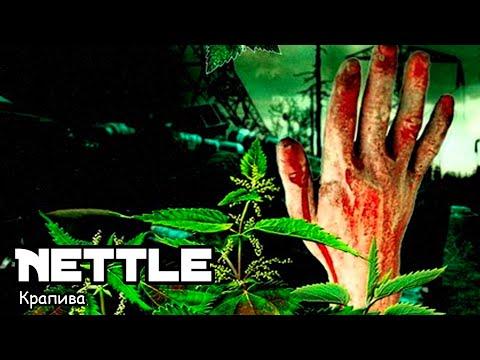 Крапива / Nettle (2016) Трэш-фильм!