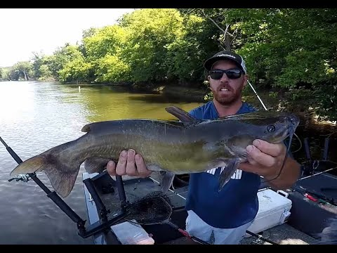July Catfishing St  Joe River