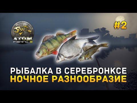 Рыбалка в Серебронксе. Ночное разнообразие - Atom Fishing II #2