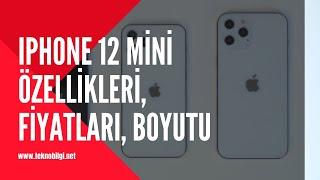 iPhone 12 mini özellikleri, çıkış tarihi, fiyatı, boyutu ve renkleri 2020