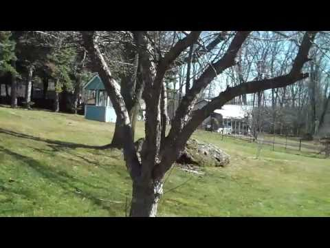 Babbling Brook Rd, Scotrun Pa $399,900 Century 21 Unlimited
