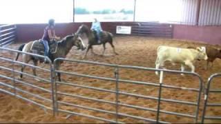 Valley View Ranch - Skippin Tivio - sorting - 2