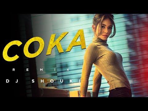 Coka (Remix) - Dj Shouki   Moombahton Mix
