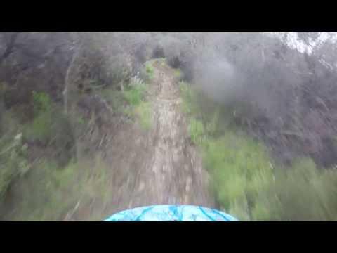 Scorpion Trail Santa Monica Mountains
