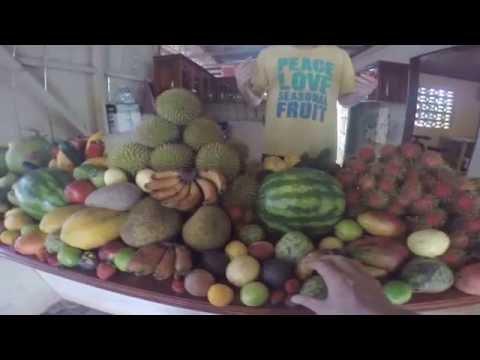 Amazing Costa Rica Farmers Market Fruit Haul
