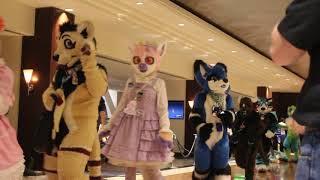 tff 2018 fursuit parade part 1