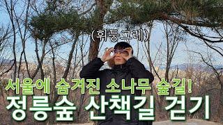 세계문화유산 조선왕릉 정릉 탐방! 서울 여행지 추천