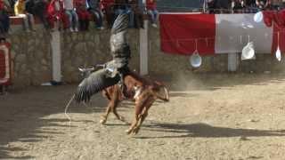 Fotos corrida de Toros,Toril en Sarayca Apurimac, Peru.