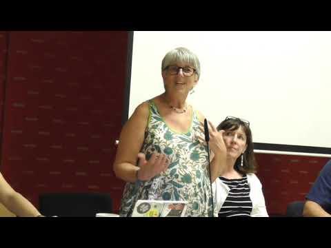 Video 12 September 2018 - Andrej Hunko MdB and Julie Ward MEP discuss Brexit