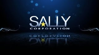 Sally Corporation | A Glimpse Inside