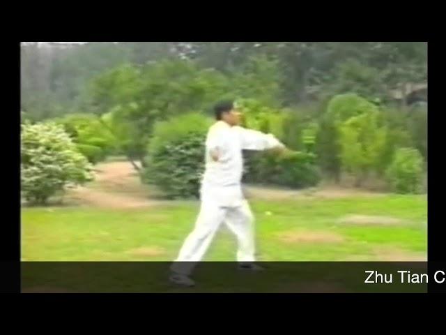 Zhu Tian Cai - Tai Chi style Chen Laojia Erlu (1984) [陈氏太极拳老架 Taijiquan style Chen]