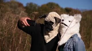 Маски животных с двигающимся ртом (Moving Mouth Masks)