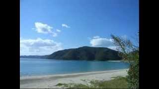 『世界名作劇場』の『不思議な島のフローネ』の曲です。 編集で気付いた...