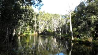 Billabong, Ivanhoe, Victoria, Australia